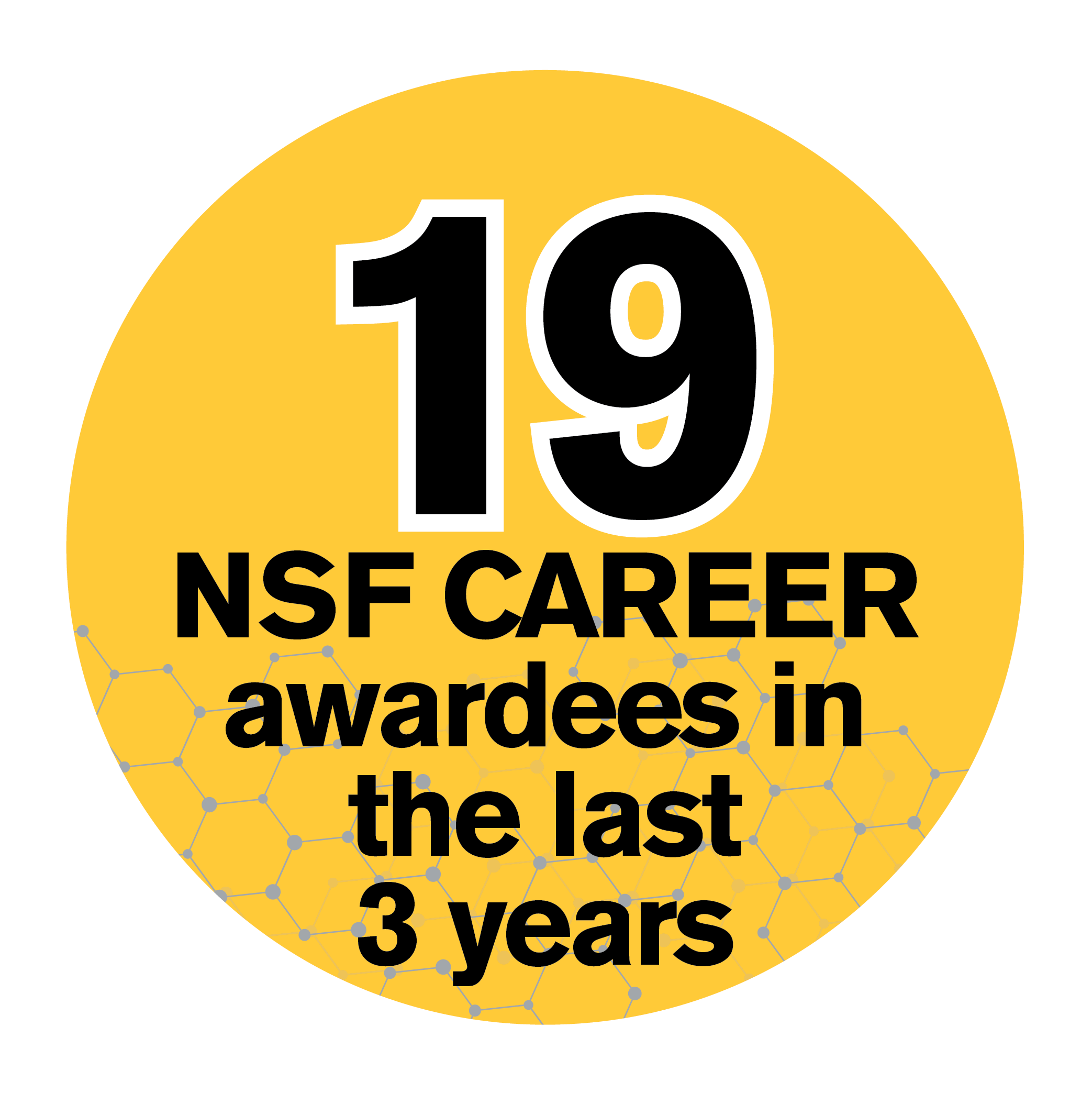 19 NSF CAREER awardees in the last 3 years