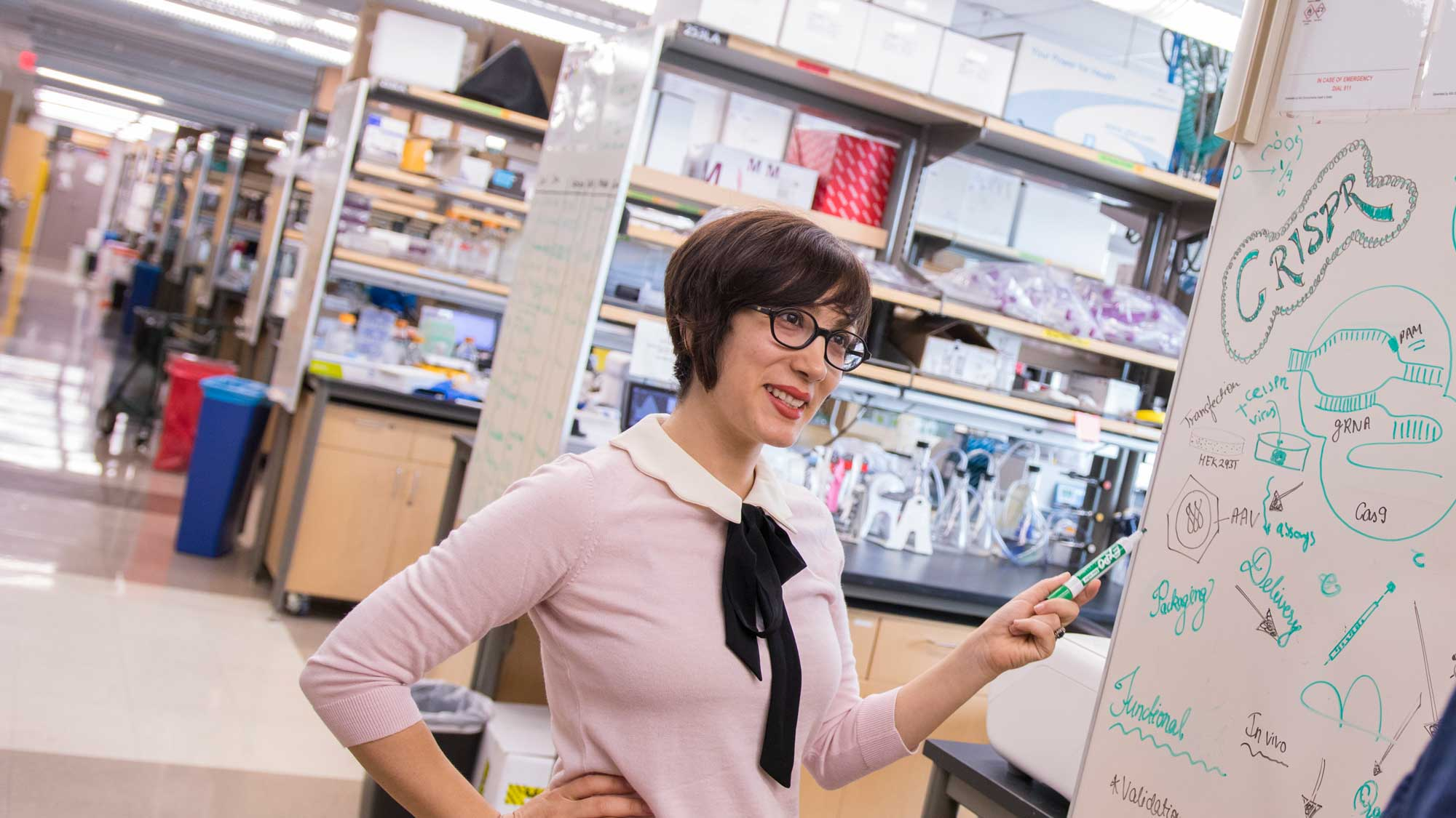 Samira Kiani stands in her lab discussing something on the white board with a colleague