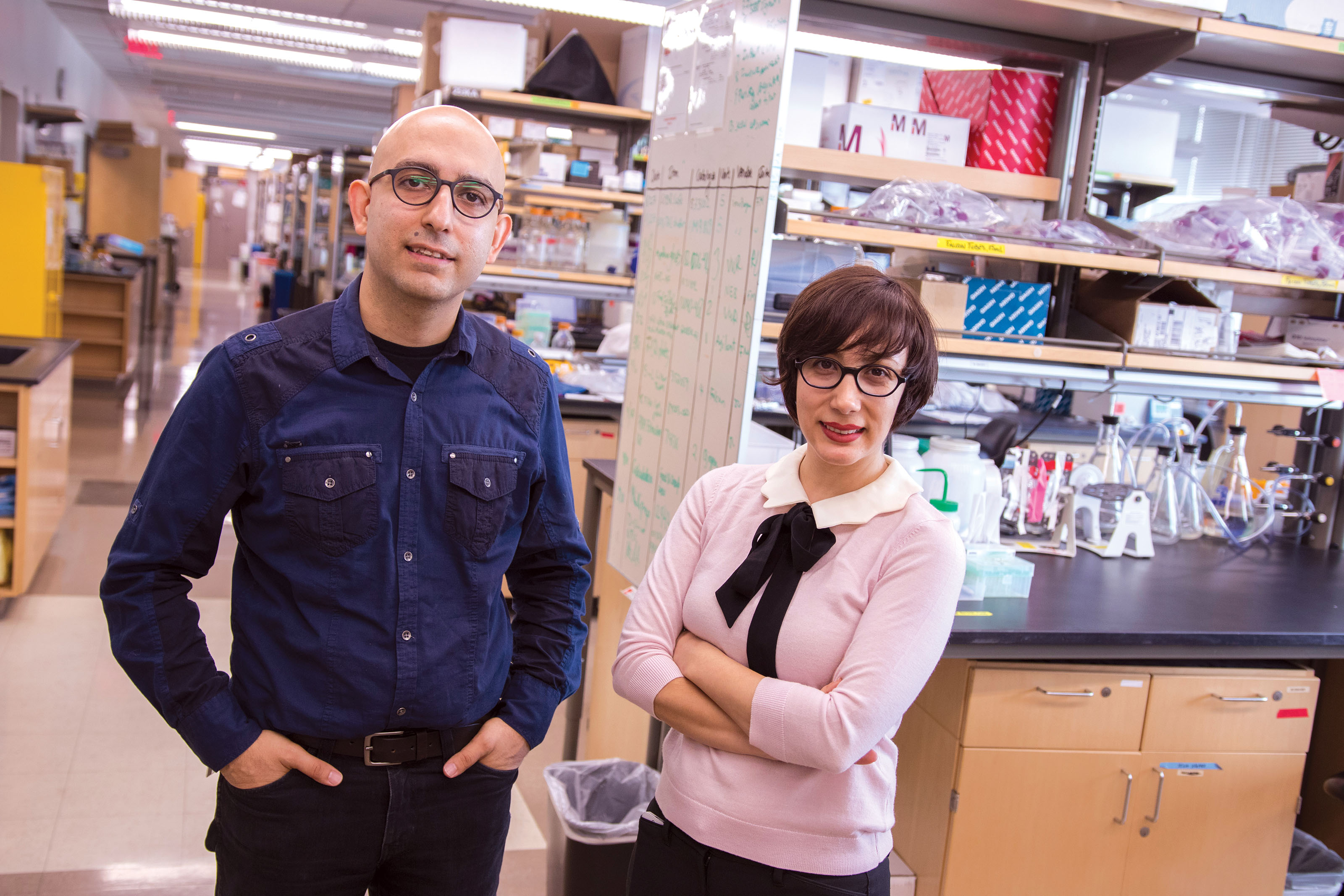 Samira Kiani and Mo Ebrahimkhani, both in the School of Biological and Health Systems Engineering, are combining their expertise in CRISPR technology.