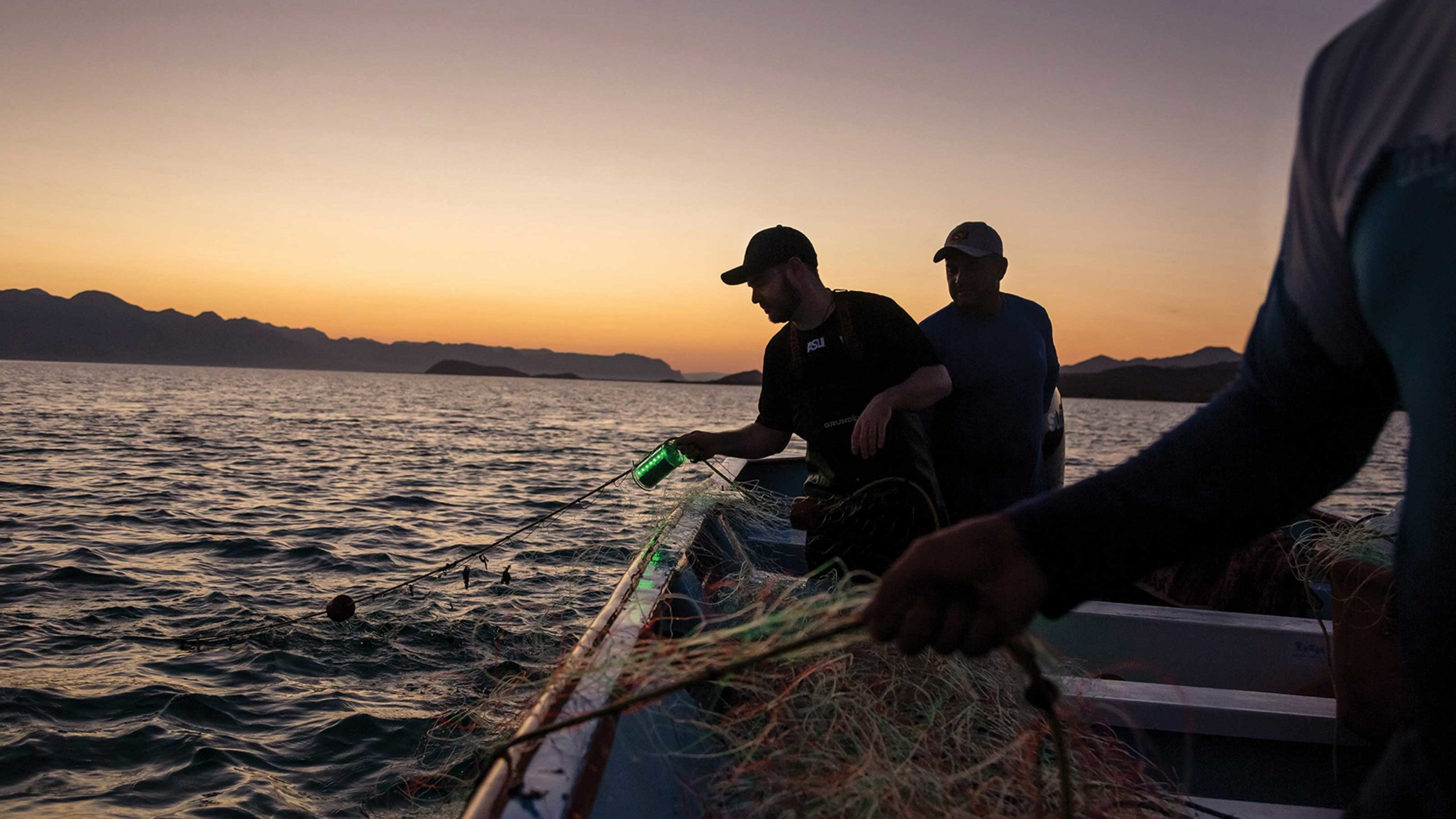 ASU researchers in a boat lower lighted fishing nets into the water at sunset
