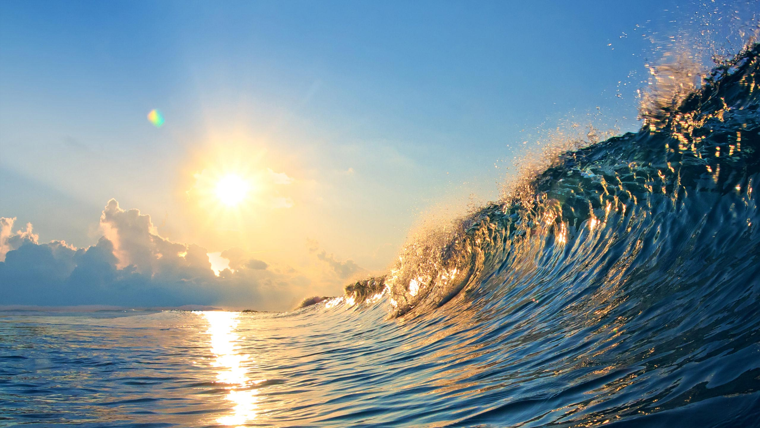 Image of a large ocean wave shining in the bright sunlight